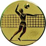 Жетон Волейбол A6/G