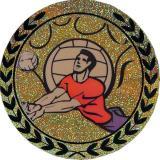 Голограмма самоклеящаяся Волейбол д.25 AGM117